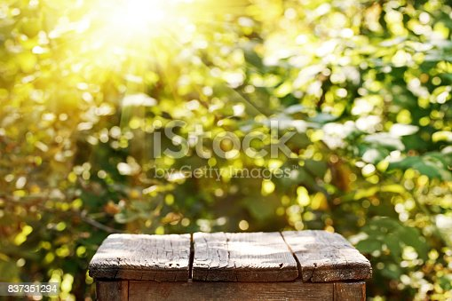 Old table on a background of blurry trees.