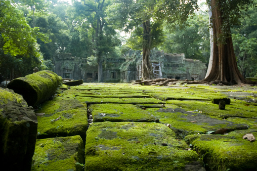 Old Temple Ruins In The Jungle Near Angkor Wat Cambodia Stock Photo - Download Image Now
