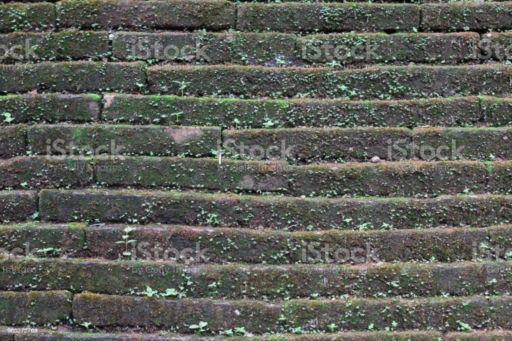 Old Temple Wall - Zbiór zdjęć royalty-free (Bez ludzi)
