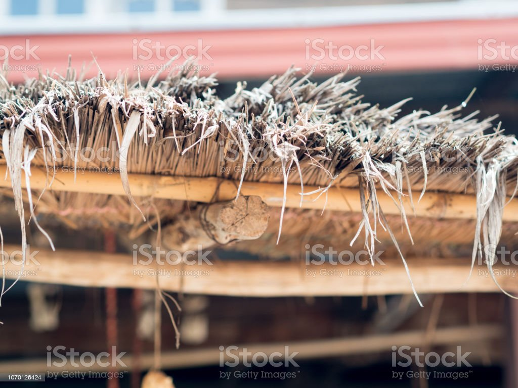 Old thatched roof stock photo