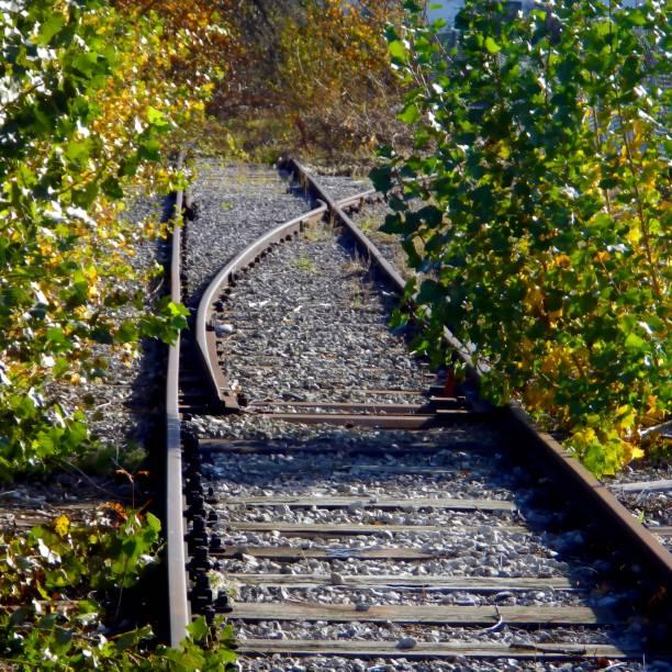 Alte Strecke, Sackgasse, führt zu nichts, überwuchert – Foto