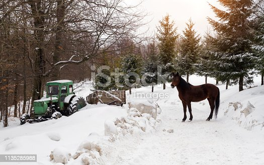 Old Tractor stuck in snow and horse standing on the road