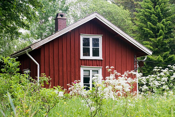 old traditional cottage from sweden - kır evi stok fotoğraflar ve resimler