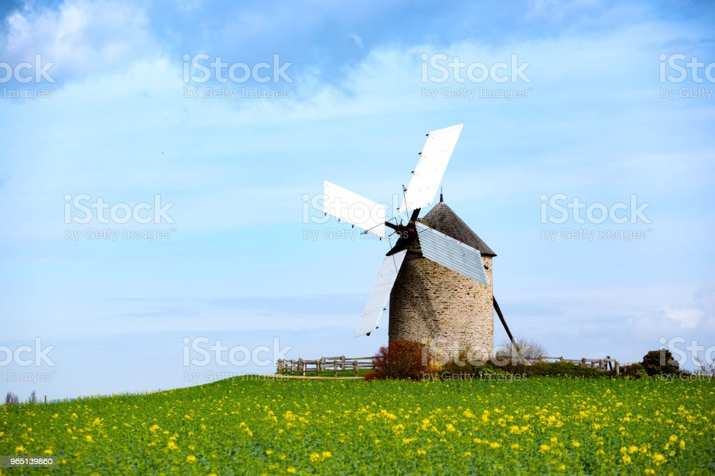old traditional normandian windmill at the field royalty-free stock photo