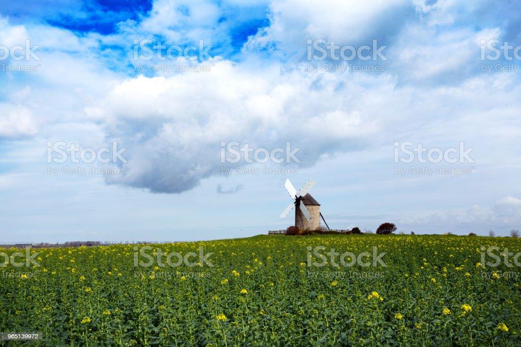 old traditional normandian windmill at the field zbiór zdjęć royalty-free