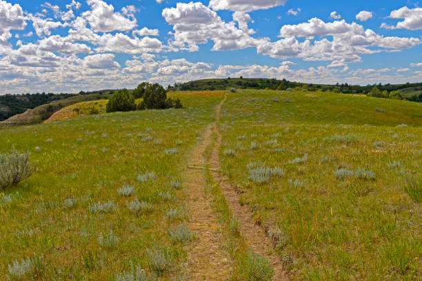 old trail across the rolling plains - great plains stock photos and pictures