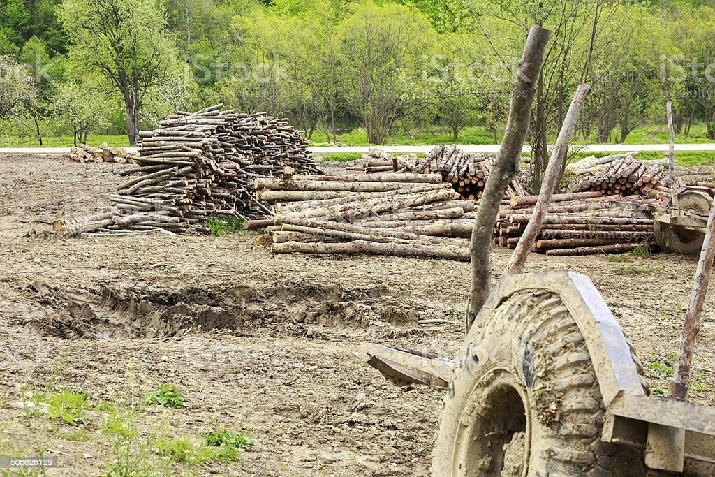Old trailer and logs royalty-free stock photo