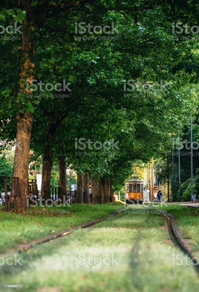 Il vecchio tram attraversa la foresta verde a Milano - Foto stock royalty-free di Affollato
