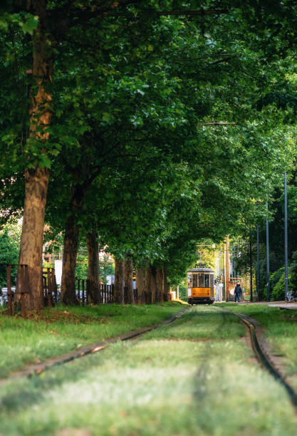 Old tram goes through green forest in Milan, Italy stock photo