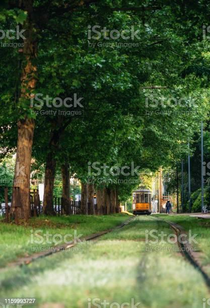 Il Vecchio Tram Attraversa La Foresta Verde A Milano - Fotografie stock e altre immagini di Affollato