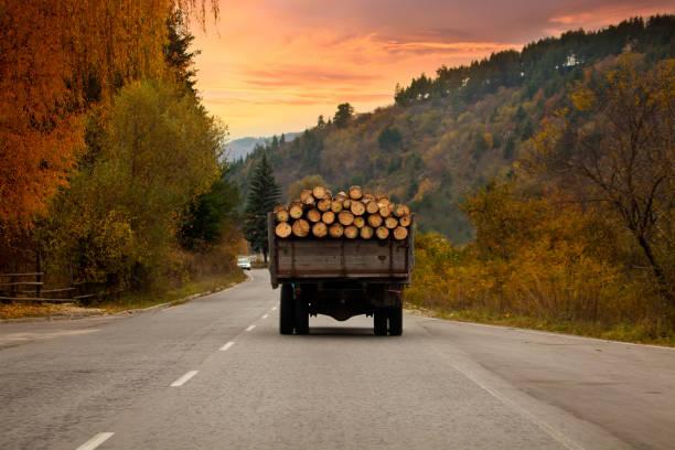 나무로 되는 통나무와 전체 오래 된 트럭 여행 아주 불가리아도가 일몰 시간 - 목재 공업 뉴스 사진 이미지