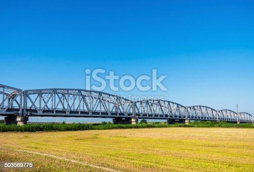 826748544 istock photo Old truss Bridge. 503569775