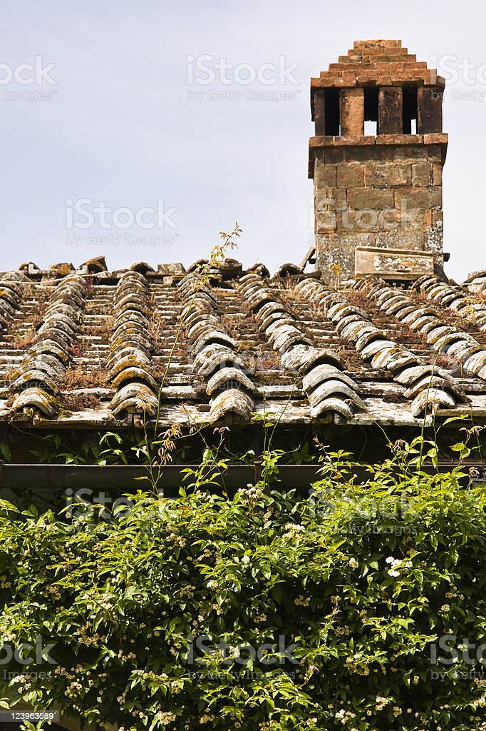 Old Tuscan Roof and Green Creeper royalty-free stock photo