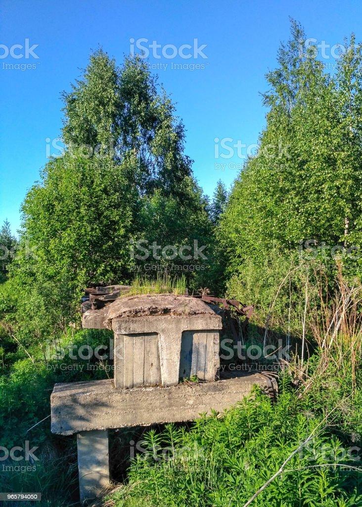 oude onvoltooide smalspoorlijn via een close-up van de moeras bos - Royalty-free Antiek - Ouderwets Stockfoto