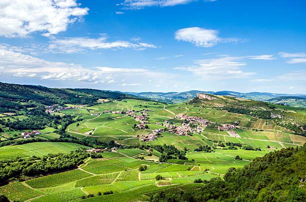 Vieux village et les vignobles - Photo