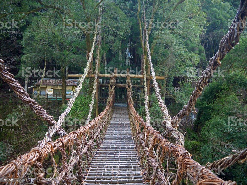 Old vine bridge stock photo