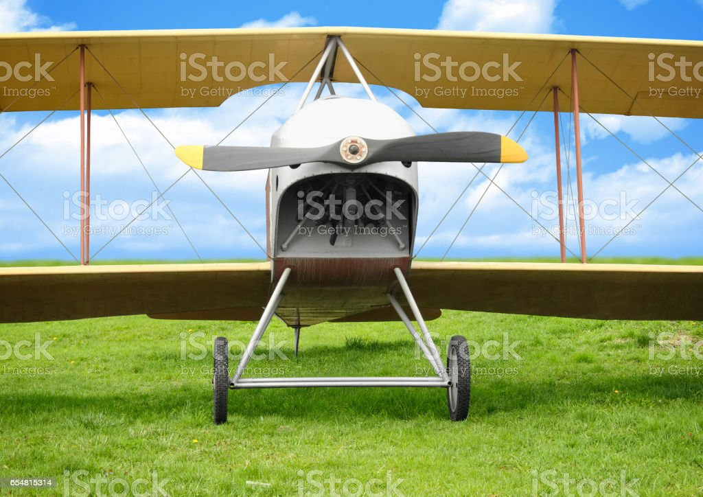 Old vintage airplane on green grass stock photo