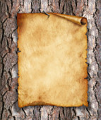 istock Old, vintage paper on wood. Original background or texture 471676177