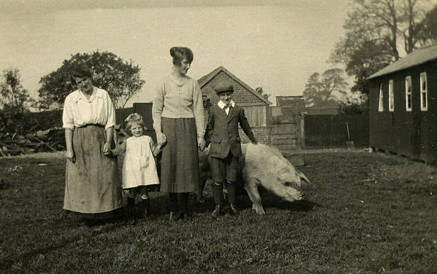 Old Vintage photo, Two Ladies and Children standing beside Pig Vintage 1900's style photo of two ladies and two children standing in garden beside a full grown pig. 19th century stock pictures, royalty-free photos & images