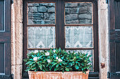 Old vintage wooden window with curtains and flower pots