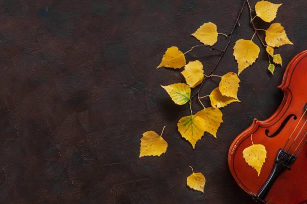 Velho violino e vidoeiro galho com folhas de outono amarelos. Vista de cima, close-up no fundo escuro vintage - foto de acervo