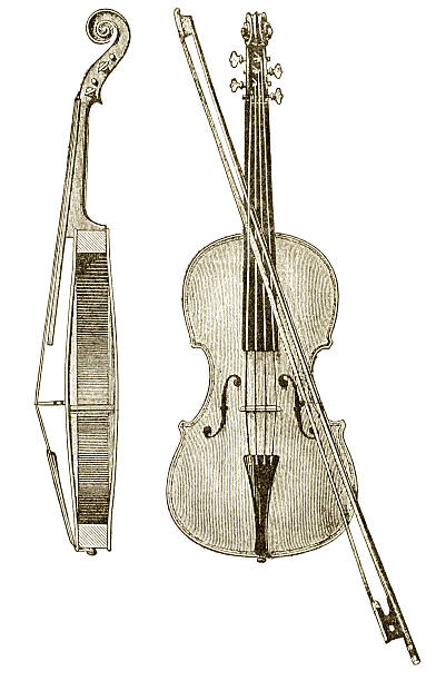 old violin illustration - etching stock pictures, royalty-free photos & images