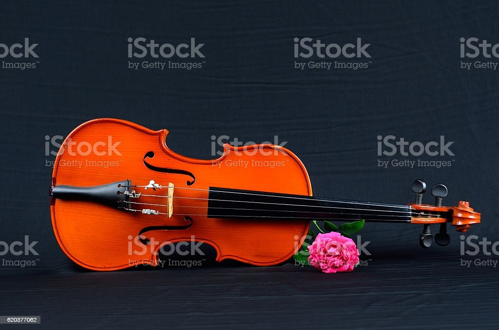 old violin on on silk fabric with rose foto de stock royalty-free