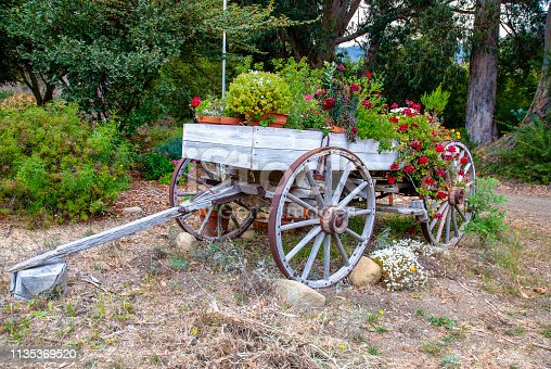 An old wagon serves as a flower stand at the  Arroyo Hondo Preserve in Santa Barbara County, California.