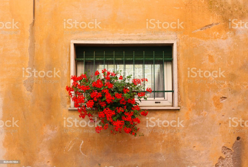 Old Wall and Flowered Window stock photo