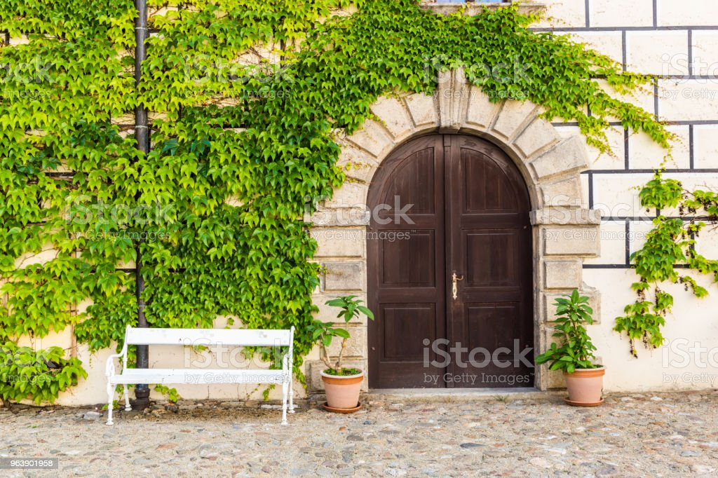 Old wall is full of vegetation green color. - Royalty-free Beauty Stock Photo