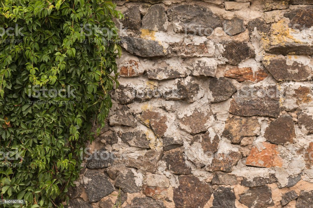 Old wall made of cobblestone and grapes lit by the sun through the clouds. stock photo