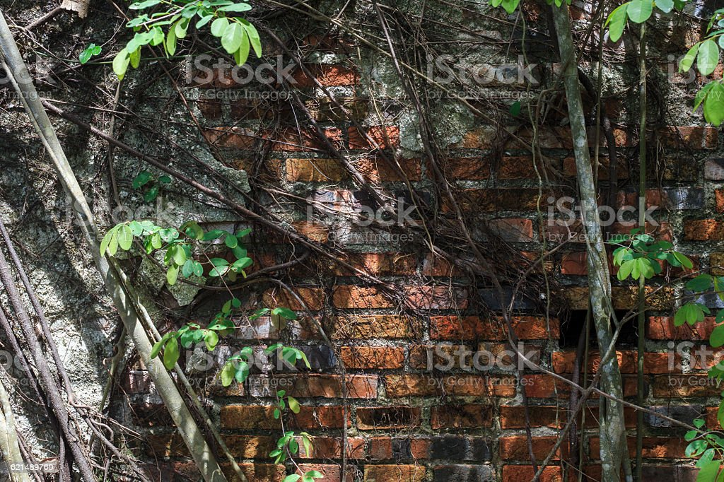 Old Wall. Lizenzfreies stock-foto