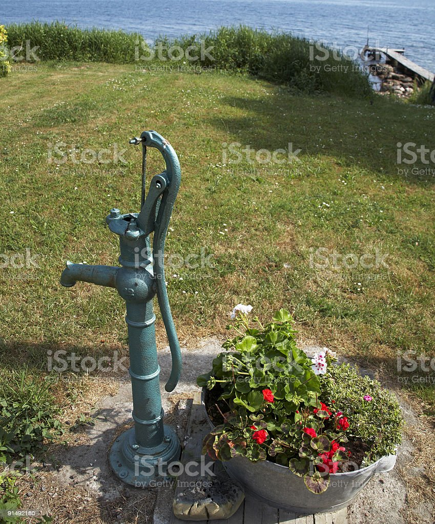 Old water pump and flowers stock photo