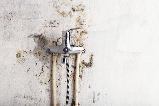 istock Old water tap and fungal mold on a light wall 1137376836