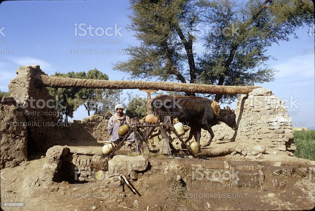 Old Watering Mill, near Asyut, Egypt stock photo