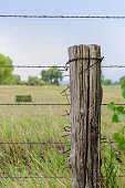 istock Old weathered barbed wire fence 1093249760