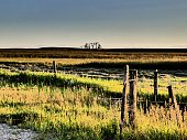istock Old Weathered Cattle Fence on the Open Prairie Landscape 1164258678