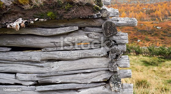 Log cabin exterior wall detail against autumn colors.