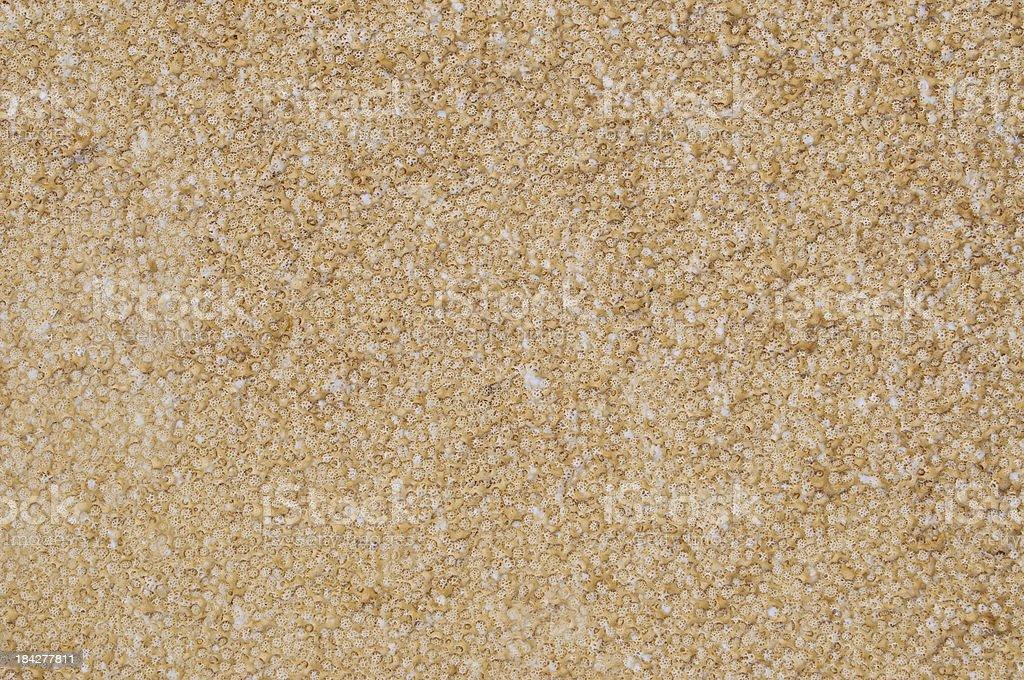 Old weathered styrofoam texture stock photo