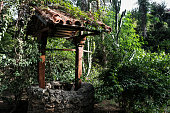 istock Old well made of stone, wood and roof tiles in a forest or garden surrounded by green bush and foliage. 1283766035