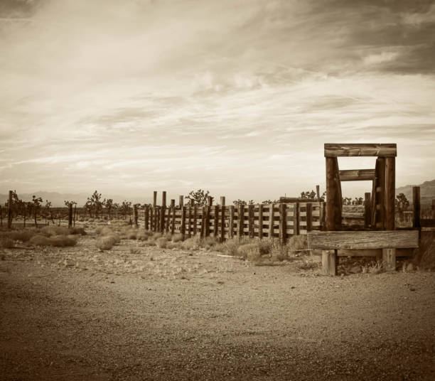Old western corral in the desert of Arizona stock photo