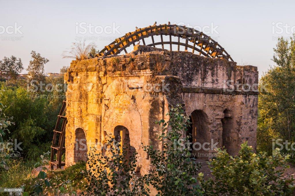 Old wheel in Cordoba stock photo
