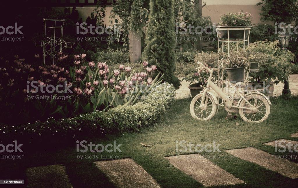 Photo libre de droit de Vieux Vélo Blanc Pour Décoration De ...