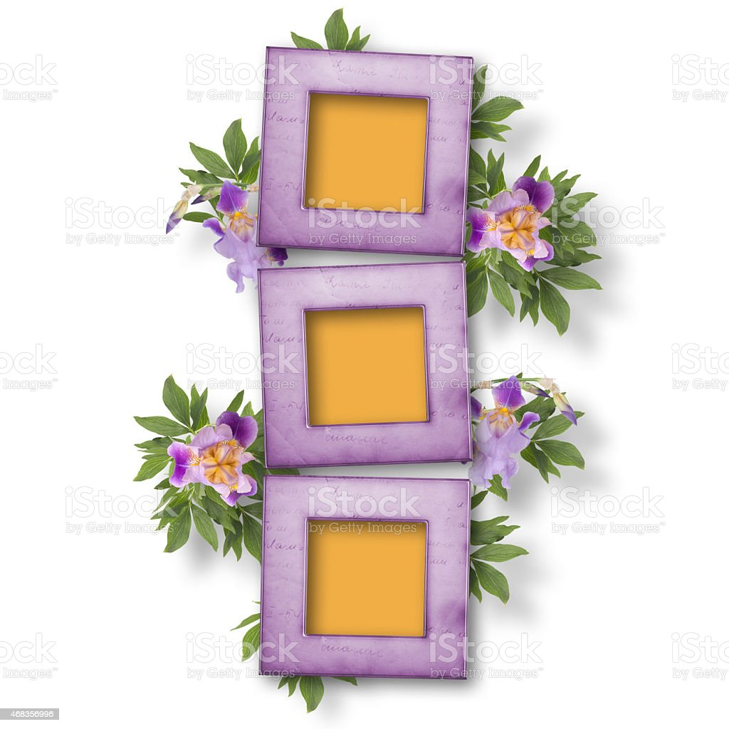 Old white isolated background with frame and bunch of flower royalty-free stock photo