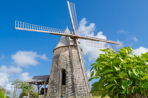 istock Old windmill of Bezard in Marie-Galante, Guadeloupe 485198180