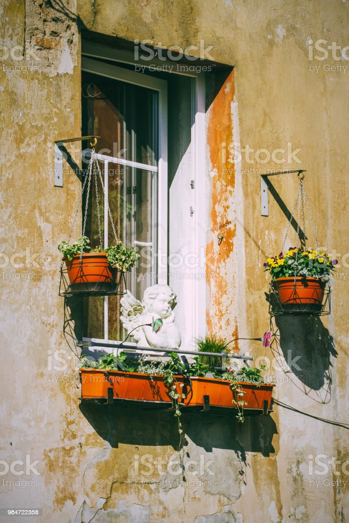 Old window with colorful flowers pot on street of Vilnius, Lithuania royalty-free stock photo