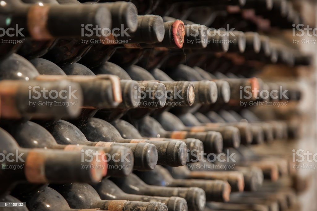 old wine bottles covered with dust and cobwebs are in the wine cellar - fotografia de stock