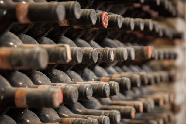 botellas de vino antiguas cubrieron de polvo y telarañas en la bodega - foto de stock