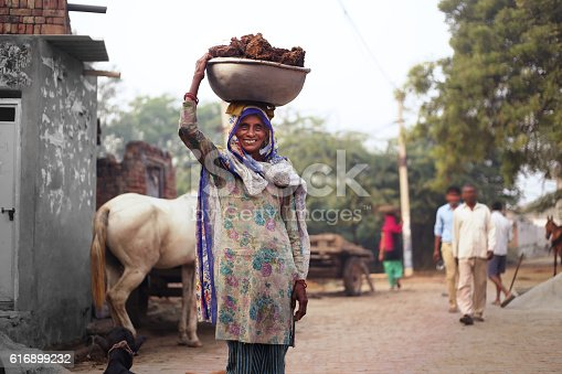 Rural women of India ethnicity wearing suit salwar and  carrying buffalo dunk cakes on her head.