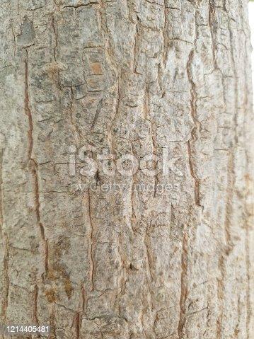 465559373 istock photo Old wood background 1214405481